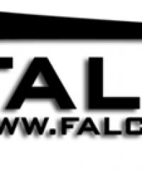 Falcon UAV