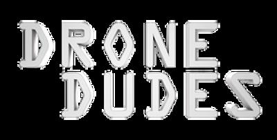 Drone Dudes